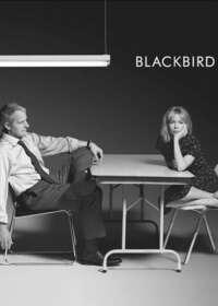 Blackbird Show Poster