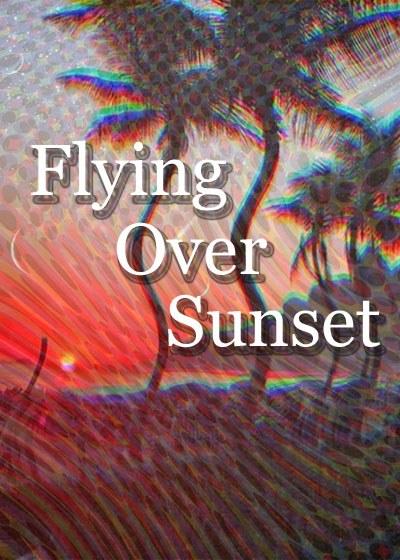 Flying Over Sunset Poster